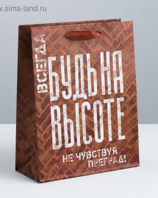 ПАКЕТ КРАФТ НЕ ЧУВСТВУЙ ПРЕГРАД! 26х30х9 см., арт. 3680960